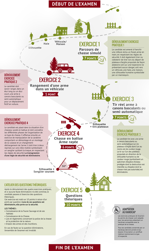 Infographie chasse